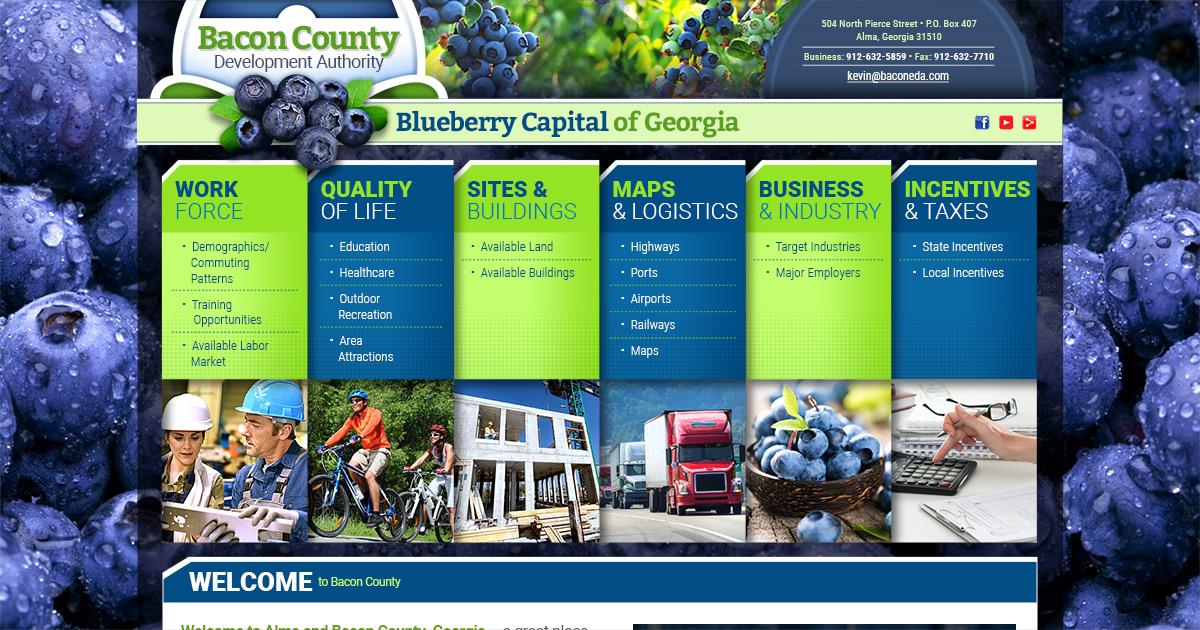 Bacon County EDA   Incentives & Taxes